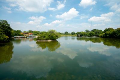 오다카 녹지, 비와가 연못