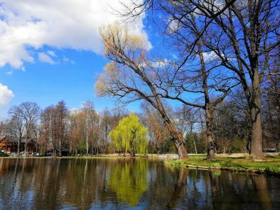 노르베스키 공원