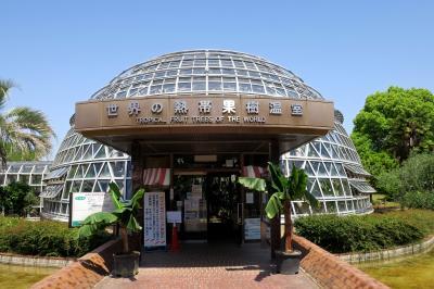 도고쿠산후루츠파크, 열대과수 온실