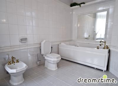 앰버 팔라스 내부 욕실