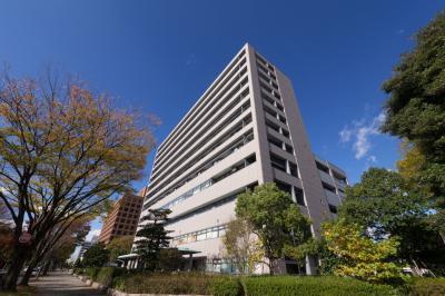 메이조 병원