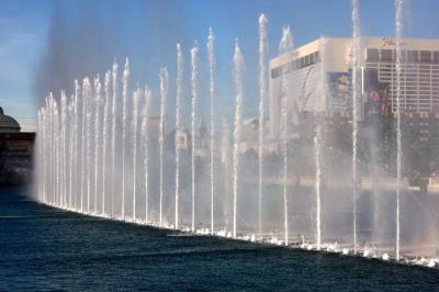 벨라지오 호텔 호수 14
