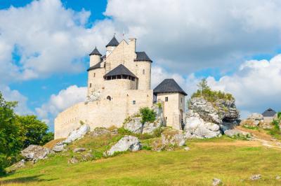 보보리체 왕립 성