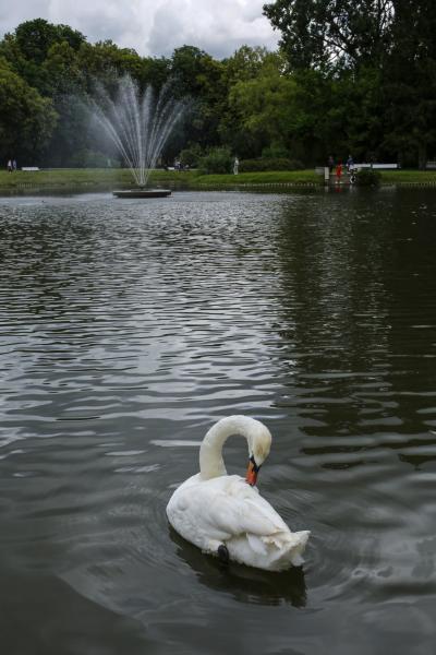 날레조브 와지엔키 공원 05