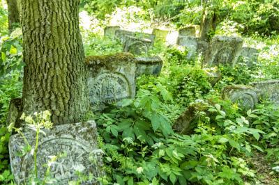 스체브제센 유대인 공동묘지  02