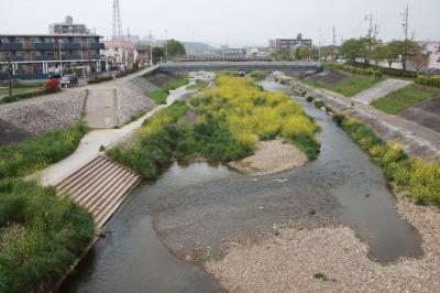 우쓰쓰강, 봄 풍경 06