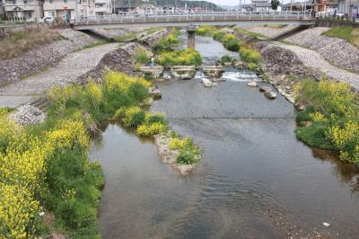 우쓰쓰강, 봄 풍경 10