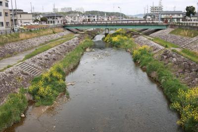 우쓰쓰강, 봄 풍경 14