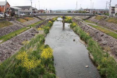 우쓰쓰강, 봄 풍경 15