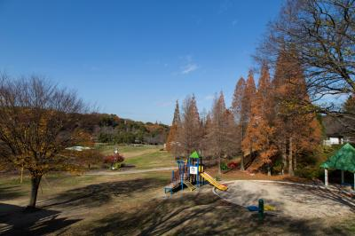 오다이공원, 가을 풍경 03