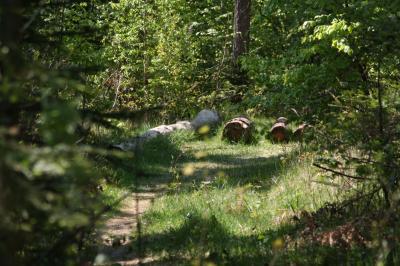 시비엥토크시스키에 국립공원 산책로