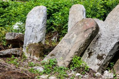 나드비르나 유대인 묘지 02