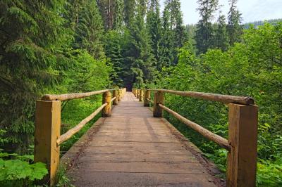 시네비르 국립공원 트레일