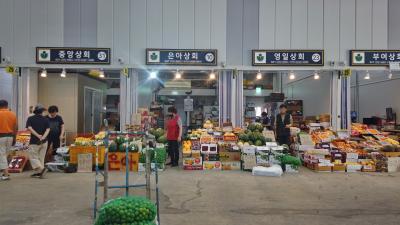 수원 농수산물도매시장 과일동 02