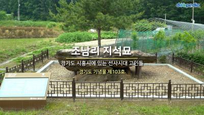 조남리 지석묘 01