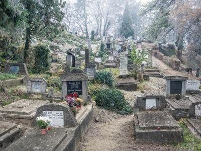 시기쇼아라 성 니콜라스 언덕 교회 공동묘지 02