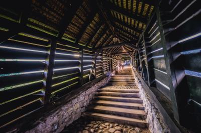 시기쇼아라 여행 명소 덮힌 계단 03