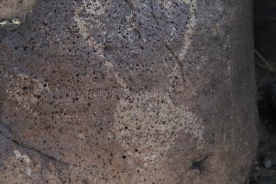 페트로글리프 국가기념물, 보카 네그라 캐년 08