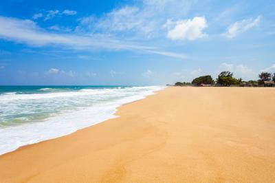 바티칼로아 해변