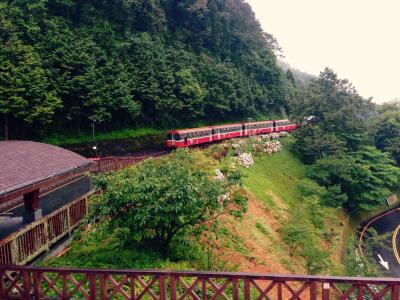 아리산 삼림 철도