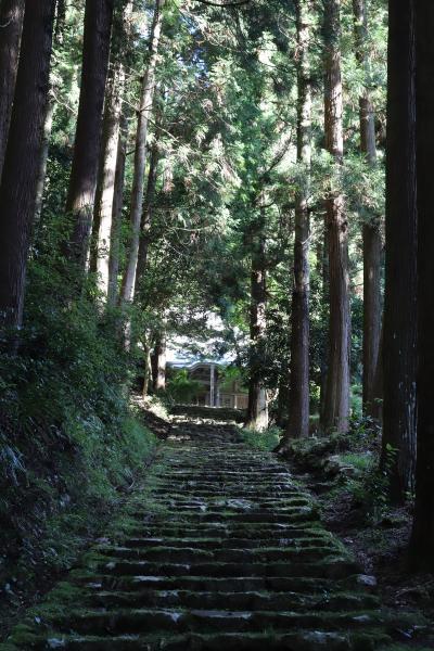 쇼콘지(효고현 지정 유형문화재-다보탑) 11