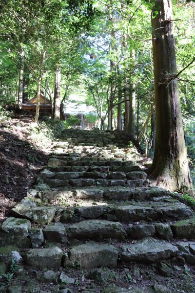 쇼콘지(효고현 지정 유형문화재-다보탑) 13