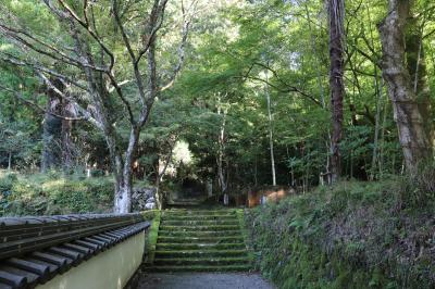쇼콘지(효고현 지정 유형문화재-다보탑) 09