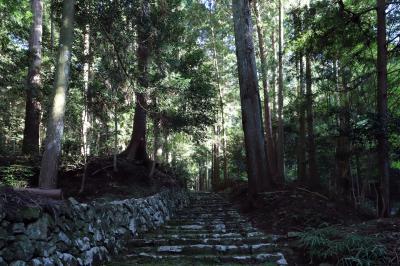 쇼콘지(효고현 지정 유형문화재-다보탑) 10