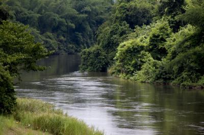 화노이 강  05