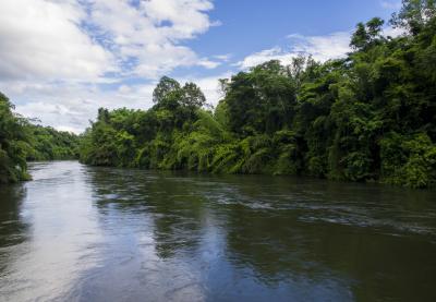 화노이 강  06