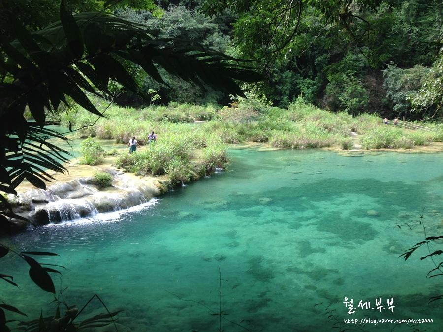 월세로 세계여행, #20-4. 과테말라 - 세묵 참페이 (Semuc Champey, Guatemala)