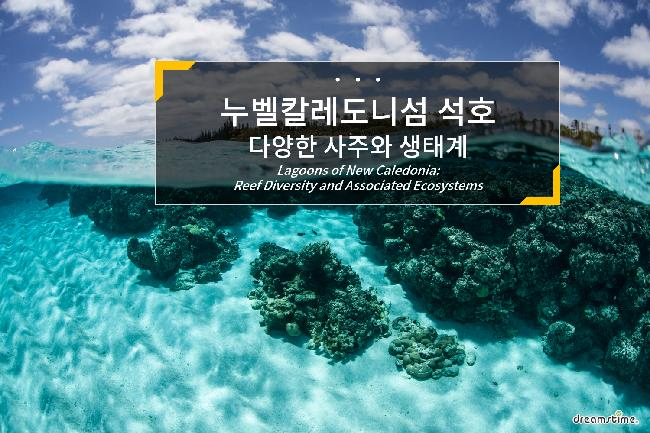 누벨칼레도니섬 석호: 다양한 사주와 생태계