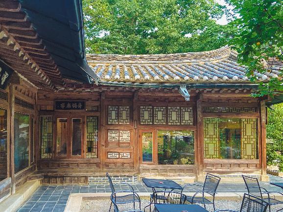 한옥 카페에서 즐기는 자연과 차 한잔