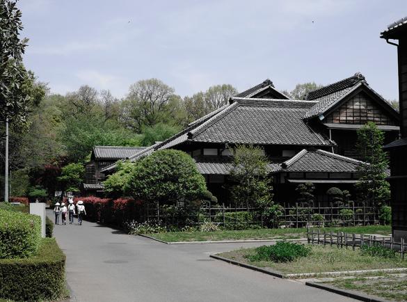 고가네이 공원과 에도 도쿄 건축 박물관 1