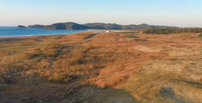 한국 사막지형, 신두리 해안사구에서 일몰을