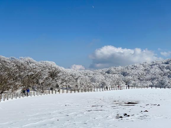 대한민국의 최고봉! 한라산 국립공원 등반