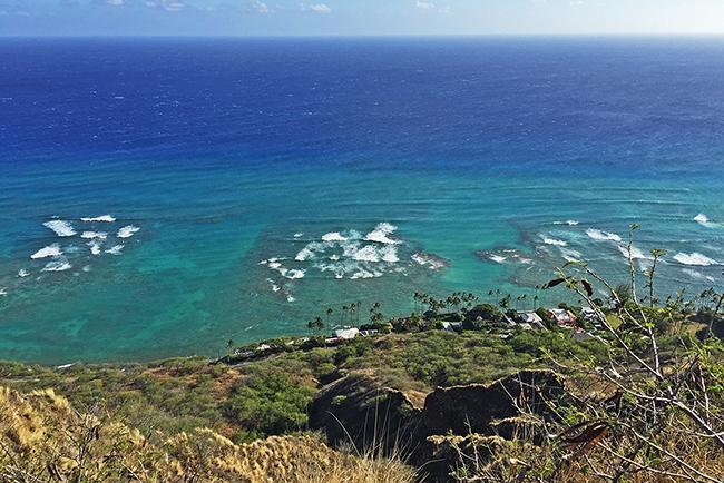 호놀룰루 여행하기 : 자연 편