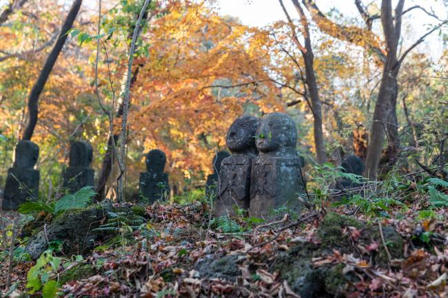 제주다운 테마파크, 자연과 문화가 있는 돌문화공원
