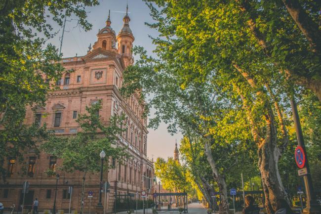 마법같은 스페인 광장