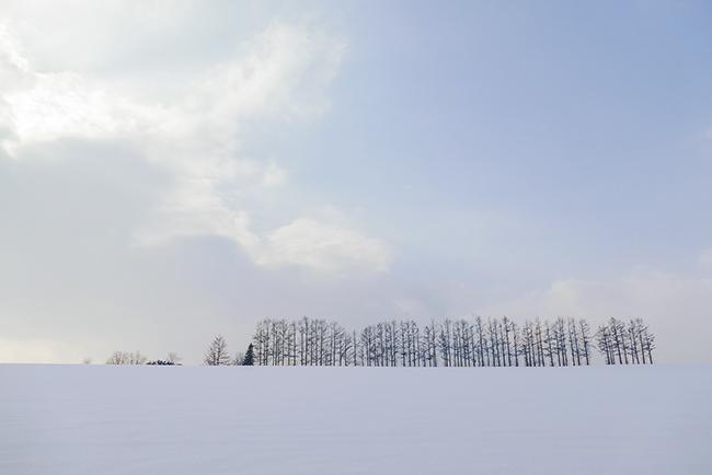 겨울 하면 떠오르는 여행지 홋카이도 비에이