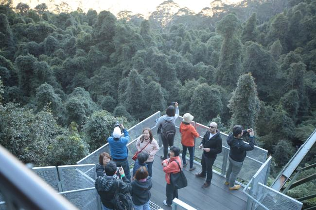 호주, 끝이 없는 장엄함 블루마운틴