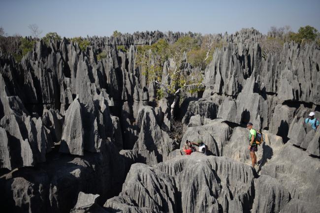 태초의 자연 미지의 세계 마다가스카르 칭기