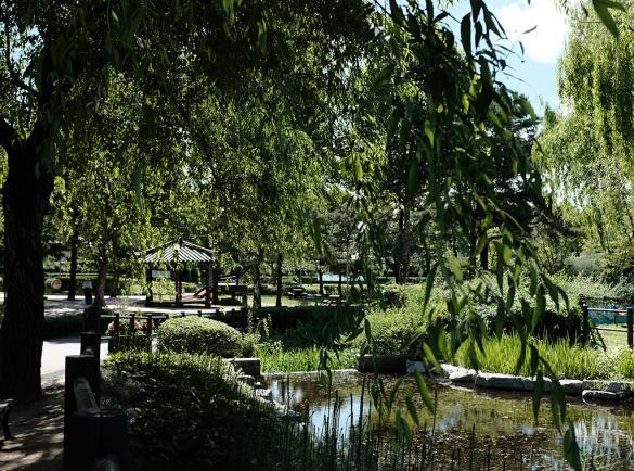 푸른 녹음이 우거진 용산가족공원