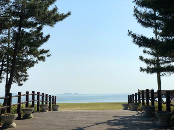 푸른 바다와 소나무숲이 함께 펼쳐진 덕적도 서포리 해변