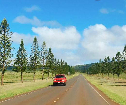 하와이 라나이 섬, 슬로우 시티 산책하기