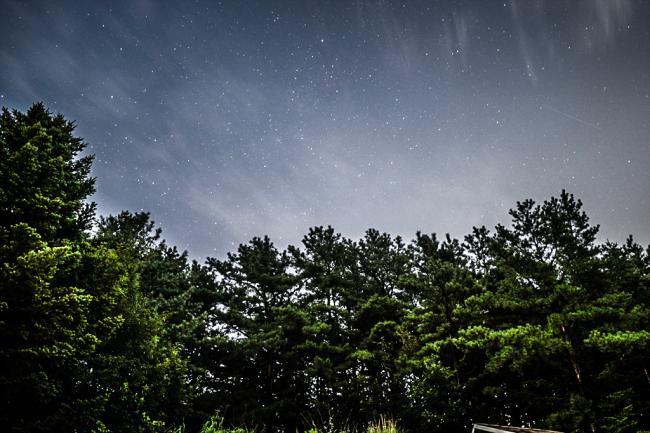 별빛과 함께 익어가는 노이하우스의 밤 (下)