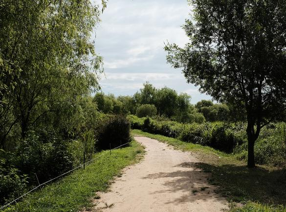 자연 따라 걷는 강서둘레길과 강서습지생태공원