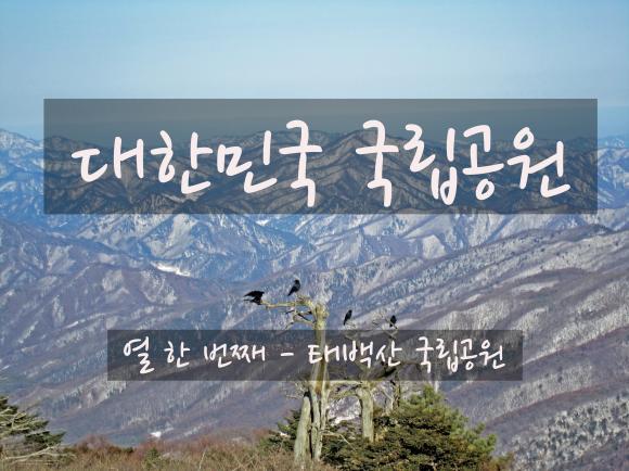 제32화 - 순백으로 뒤덮인 민족의 영산, 태백산
