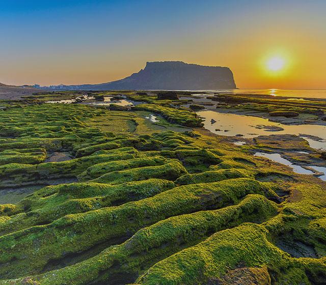 우유니를 닮은 오조포구와 윤슬이 아름답던 소금막해변