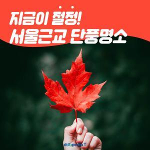 지금이 절정!  서울 근교 단풍 명소